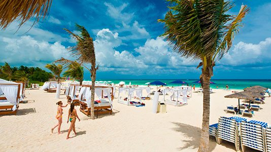 Services in Playa del Carmen
